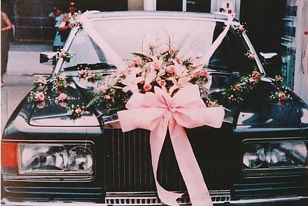 户外婚礼、婚礼专车定制服务,或将成未来流行趋势  第4张