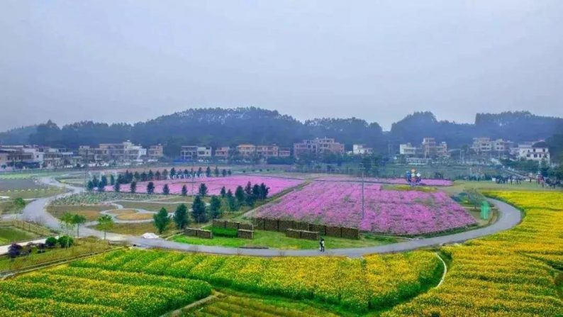 解锁婚庆旅游新业态!6条婚庆主题线路,带你玩转广州  第14张