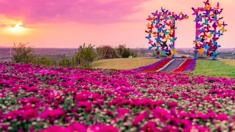 青岛首座「LOVEYE PARK」正式开园  第2张