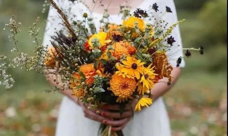 这个黄金周,济南办了8000余场婚礼!  第2张
