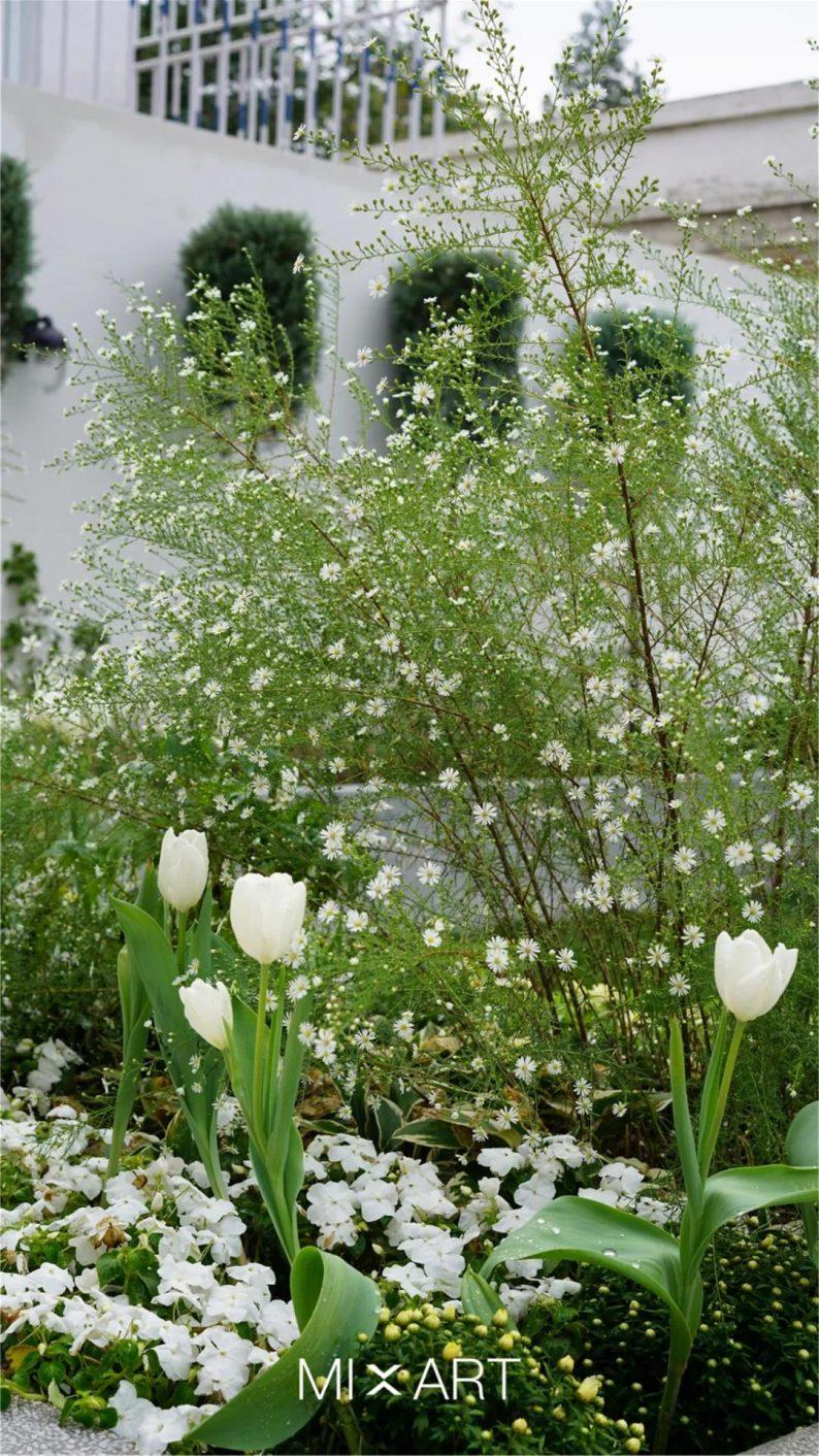 婚礼堂发布:北京城市中的婚礼花园  第12张