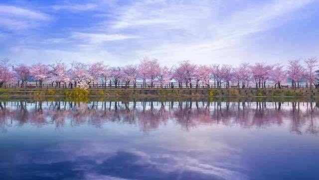 婚礼堂发布:沉浸式体验!东湖印象婚礼艺术中心初相见  第19张