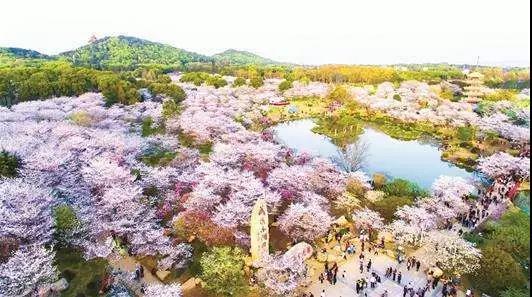 婚礼堂发布:沉浸式体验!东湖印象婚礼艺术中心初相见  第18张