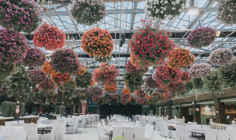 婚礼堂发布:百亩草坪、3大宴会厅!常州花鸟园生态酒店  第18张