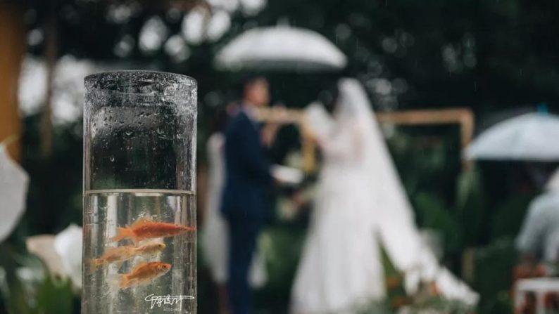 绝美小众婚礼合集,99%的新娘都会喜欢~  第5张