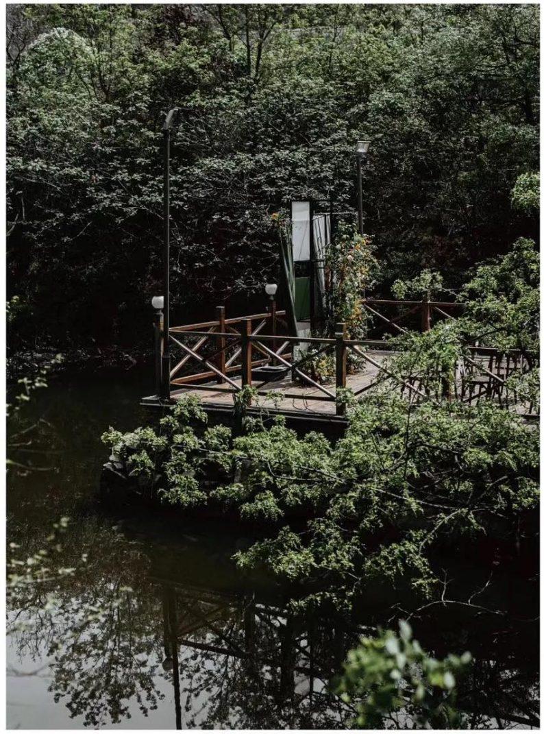 花漾婚礼堂:岛城首个湖畔&木屋婚礼场地