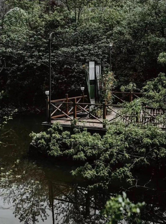 花漾婚礼堂:岛城首个湖畔&木屋婚礼场地  第14张