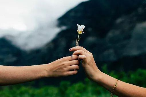 2020泰州结婚大数据:3.0万对新人结婚,1.0万对夫妻离婚  第3张
