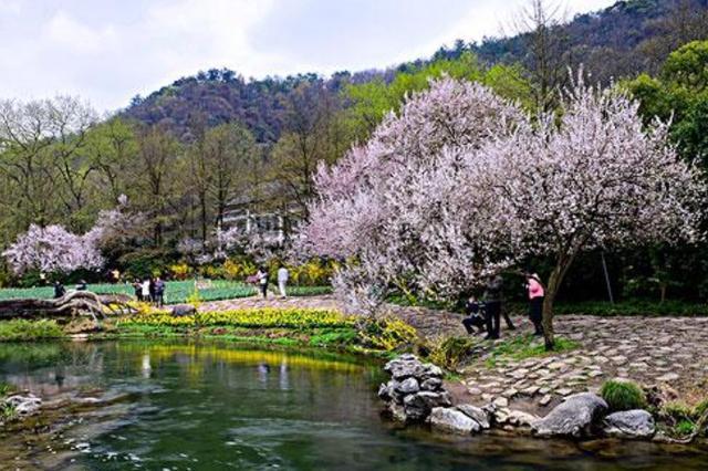 占地1200亩!杭州婚庆主题公园