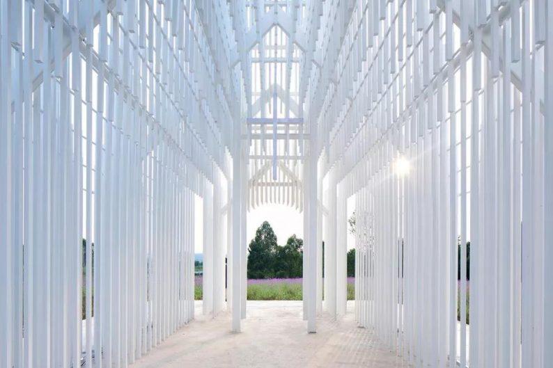 婚礼堂发布:建在薰衣草花田里的无影教堂  第6张