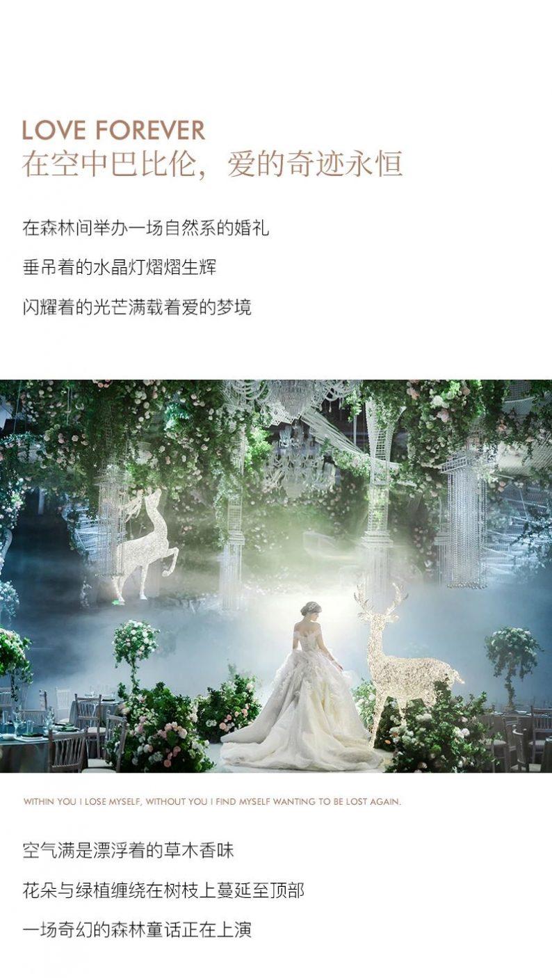 花嫁丽舍特别企划:《空中巴比伦》  第6张