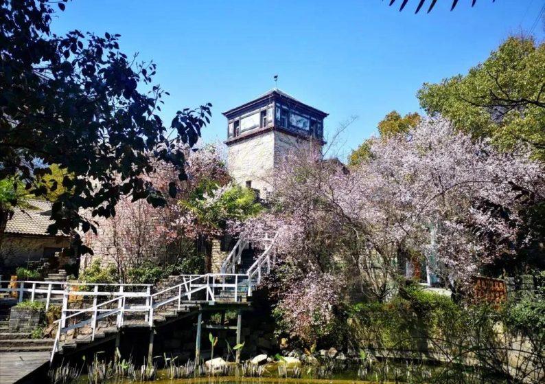 婚礼堂发布:上海得丘婚礼会馆空间改造计划  第13张