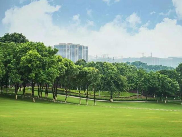重庆城市中心公园,成婚纱照打卡胜地  第4张