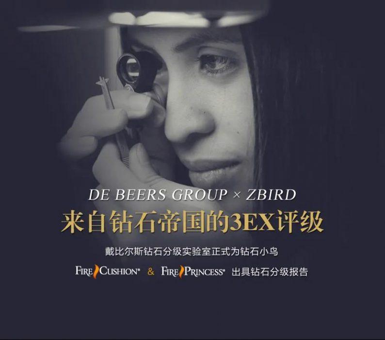 钻石小鸟郭海峰:「钻戒大师」如何用科技革新钻石零售市场?  第9张