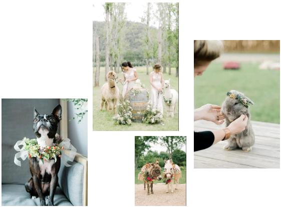 打造婚礼互动欢迎区的6个灵感  第12张