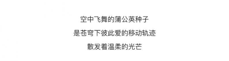 婚礼堂发布:花嫁丽舍新品发布  第15张